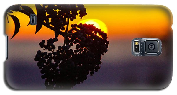 Shadow Berry Sunset Galaxy S5 Case