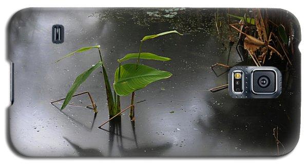 Shadow Mirror Reflection Galaxy S5 Case