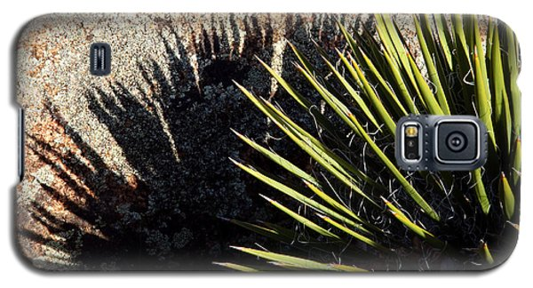 Shadow Of The Yucca Plant Galaxy S5 Case