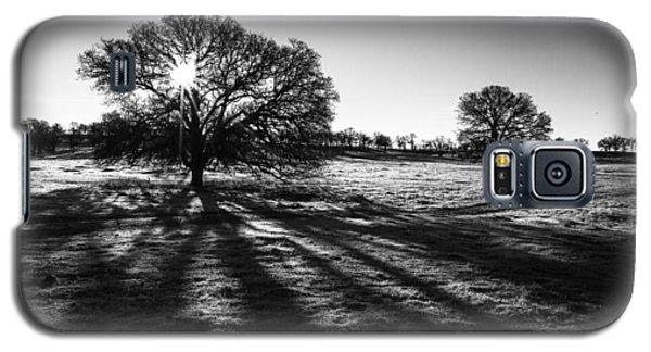 Shadow Play Galaxy S5 Case by Randy Wood