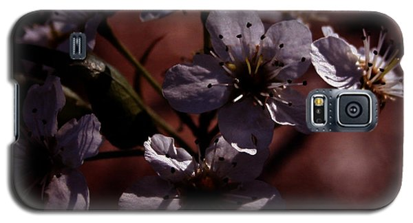 Shadowed Flowers Galaxy S5 Case