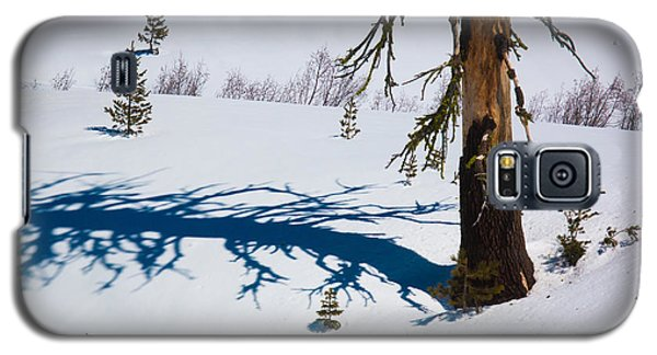 Galaxy S5 Case featuring the photograph Shadowland by Jan Davies