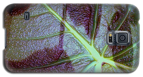 Galaxy S5 Case featuring the photograph Shadows Leaf by Irma BACKELANT GALLERIES