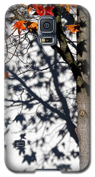 Galaxy S5 Case featuring the photograph Shadows Of Fall by CML Brown