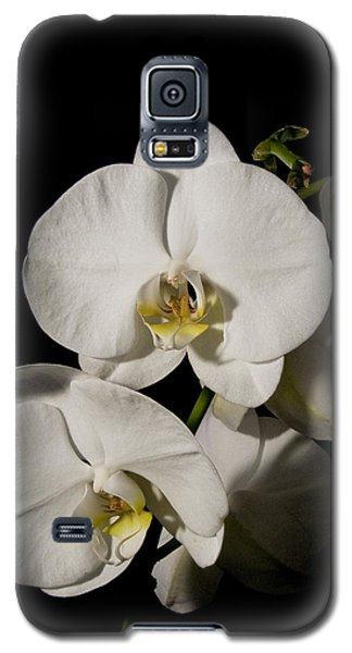Shadowy Orchids Galaxy S5 Case