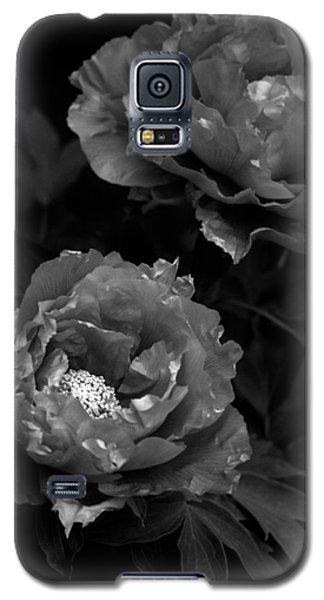 Galaxy S5 Case featuring the photograph Shakuyaku by Rachel Mirror