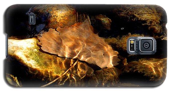Shallow Beauty Galaxy S5 Case