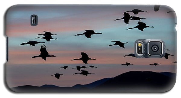 Galaxy S5 Case featuring the photograph Sandhill Cranes Landing At Sunset 2 by Avian Resources