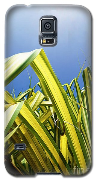 Galaxy S5 Case featuring the photograph Shape Of Hawaii 9 by Ellen Cotton
