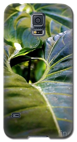 Galaxy S5 Case featuring the photograph Shapes Of Hawaii 11 by Ellen Cotton