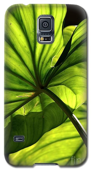 Shapes Of Hawaii 12 Galaxy S5 Case
