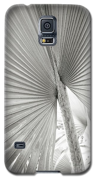 Galaxy S5 Case featuring the photograph Shapes Of Hawaii 8 by Ellen Cotton