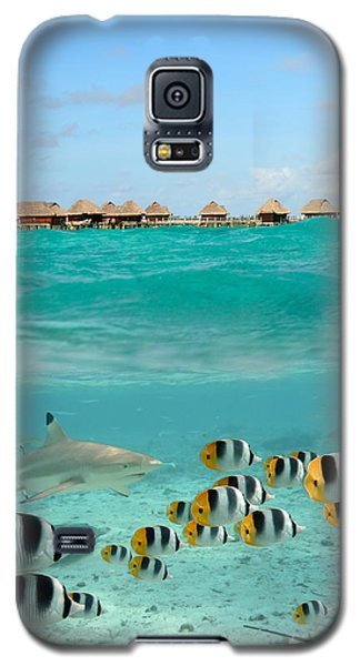 Over-under With Shark And Butterfly Fish At Bora Bora Galaxy S5 Case