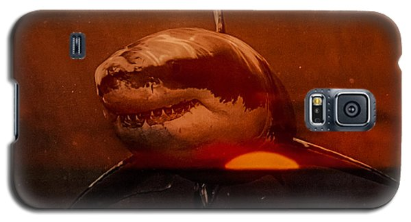 Shark In A Sunset Galaxy S5 Case by Randy Sylvia