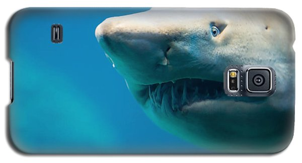 Bull Galaxy S5 Case - Shark by Johan Swanepoel