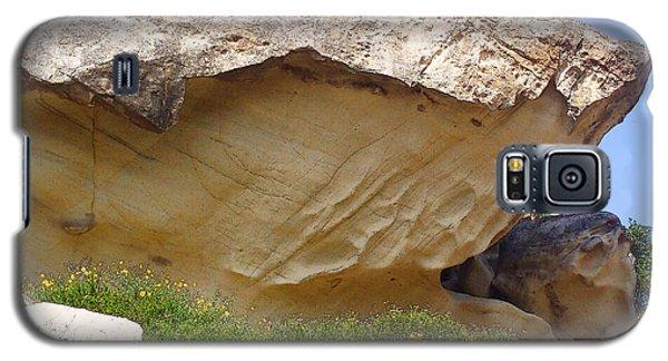 Shark Rock Galaxy S5 Case