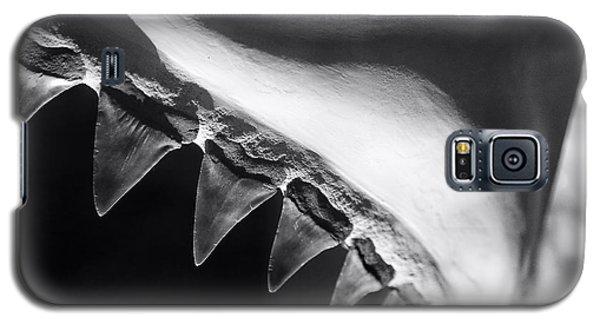 Shark's Teeth Galaxy S5 Case