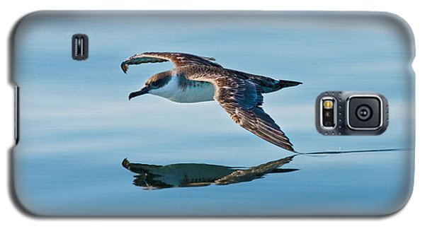 Shearing The Water... Galaxy S5 Case by Nina Stavlund