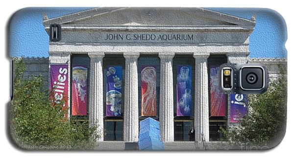 Shedd Aquarium-1 Galaxy S5 Case by Kathie Chicoine