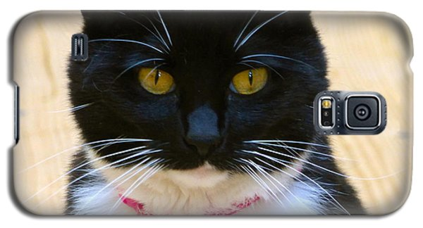 Sheeba Galaxy S5 Case
