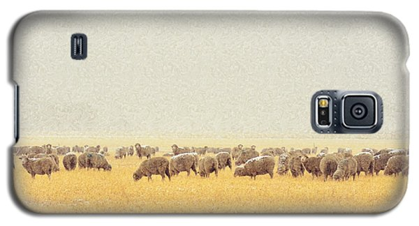 Sheep In Snow Galaxy S5 Case