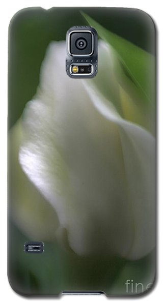 Galaxy S5 Case featuring the photograph Sheer Elegance by Mary Lou Chmura