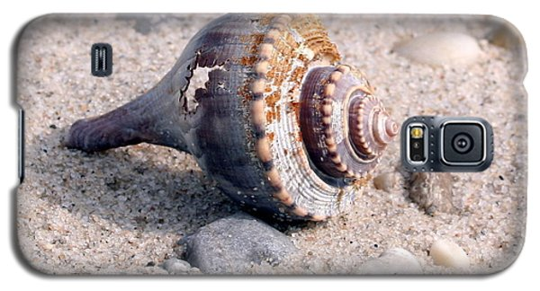 Galaxy S5 Case featuring the photograph Shell by Karen Silvestri