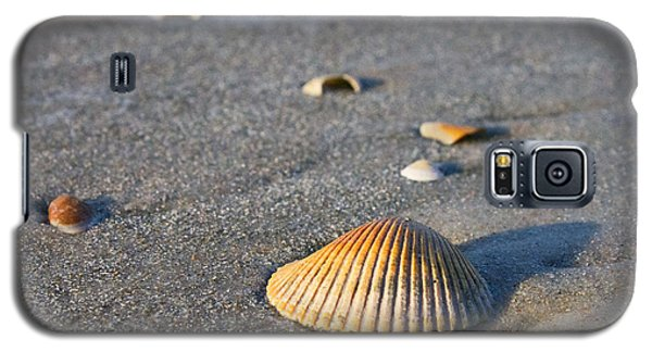 Galaxy S5 Case featuring the photograph Shells 01 by Melissa Sherbon