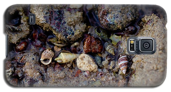 Galaxy S5 Case featuring the photograph Shells In Bauxite by Carole Hinding