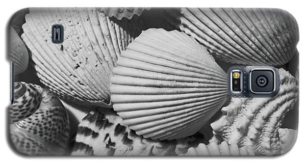 Shells In Black And White Galaxy S5 Case