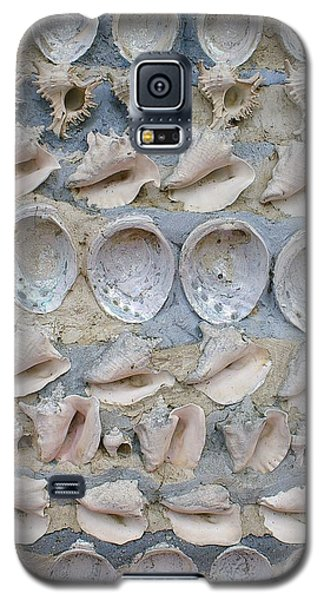Galaxy S5 Case featuring the photograph Shells by Randy Pollard