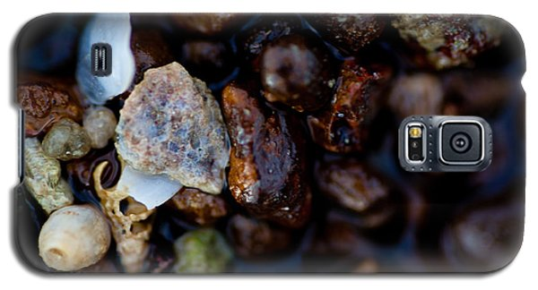 Galaxy S5 Case featuring the photograph Shells With Bauxite by Carole Hinding