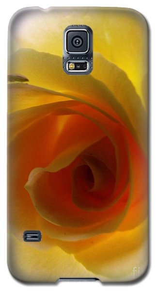 Galaxy S5 Case featuring the photograph Shelter Me From Harm by Robyn King
