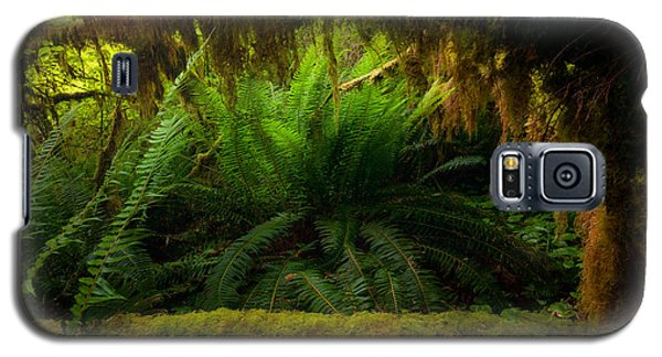 Sheltered Fern Galaxy S5 Case