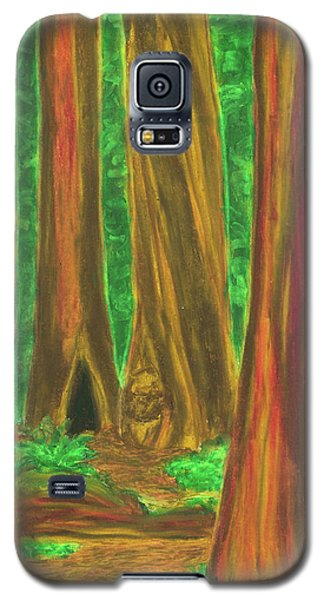 Sheltering Mysteries Galaxy S5 Case