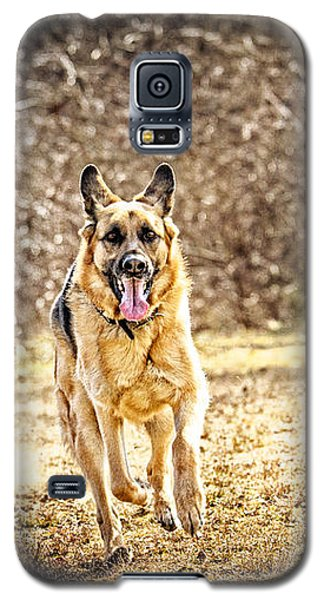 Shepherds On The Run Galaxy S5 Case by Eleanor Abramson