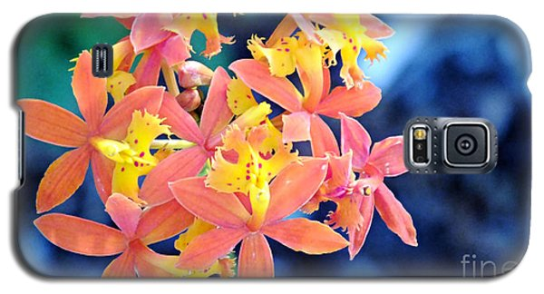 Galaxy S5 Case featuring the photograph Sherbert Of The Sun by Joy Angeloff