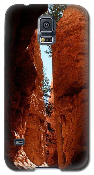 Sherbet Walls Galaxy S5 Case