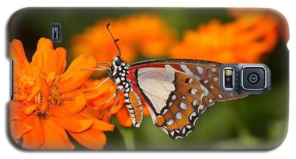 Galaxy S5 Case featuring the photograph Sherbet With A Butterfly On Top  by Ruth Jolly