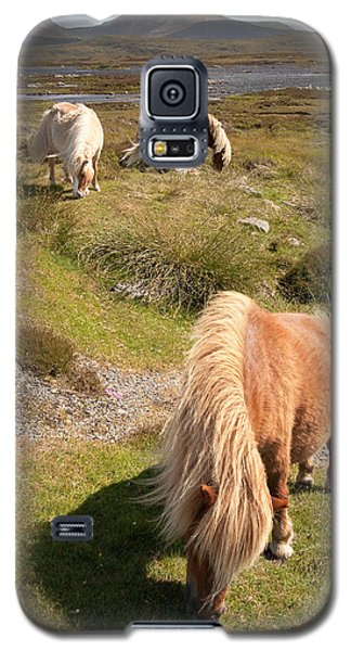 Shetland Ponies Galaxy S5 Case
