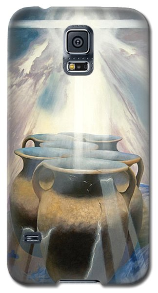 Shining Pots Galaxy S5 Case