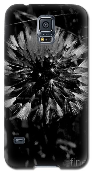 Galaxy S5 Case featuring the photograph Shining by Simona Ghidini