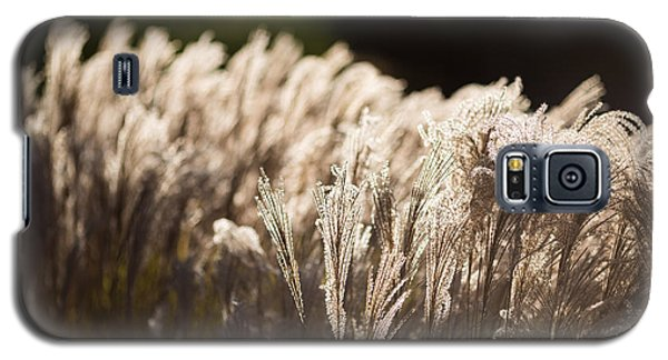 Galaxy S5 Case featuring the photograph Shining Weeds by Mike Lee