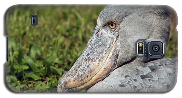 Galaxy S5 Case featuring the photograph Shoebill Balaeniceps Rex by Liz Leyden