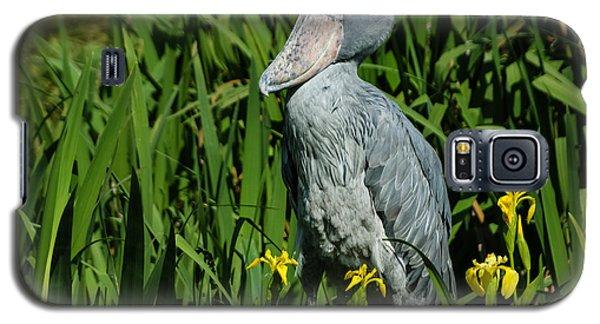 Galaxy S5 Case featuring the photograph Shoebill Stork by Georgia Mizuleva