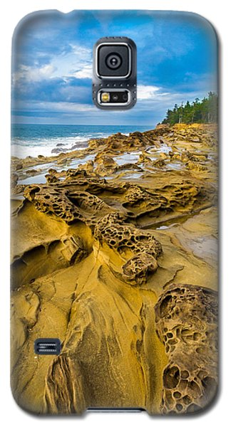 Shore Acres Sandstone Galaxy S5 Case by Robert Bynum