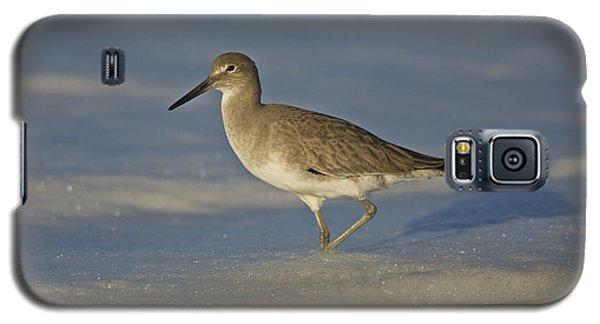 Shore Bird Mg_7903 Galaxy S5 Case