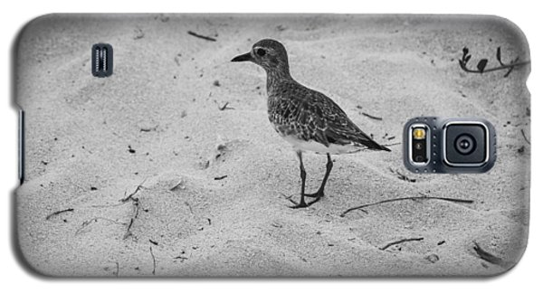 Galaxy S5 Case featuring the photograph Shore Bird by Phil Abrams