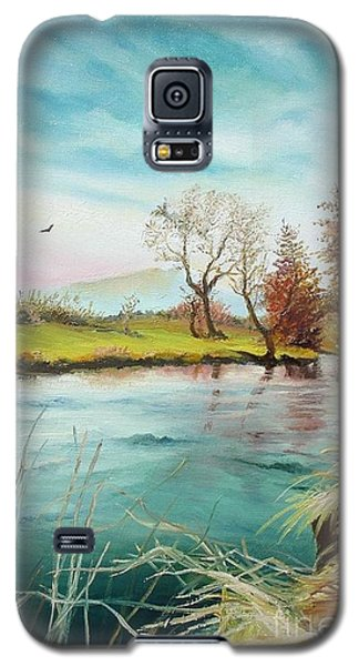 Galaxy S5 Case featuring the painting Shore Of The River by Sorin Apostolescu