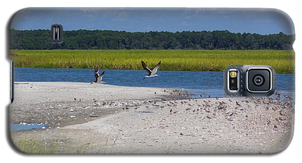 Galaxy S5 Case featuring the photograph Shorebirds And Marsh Grass by Patricia Schaefer